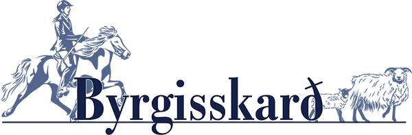 Logo Byrgisskard